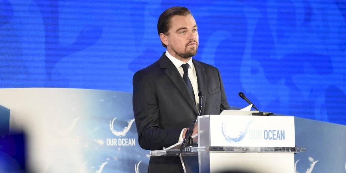 Leonardo DiCaprio Kim Kardashian y otras estrellas congelan por hoy sus redes sociales