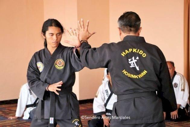 Aprende Hapkido, defensa personal coreana, en HoSinKwan. Cortesía: Blog Sendero Artes Marciales