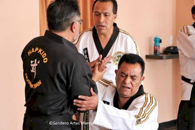 Aprende Hapkido, defensa personal coreana, en HoSinKwan. Foto: Cortesía Blog Sendero Artes Marciales