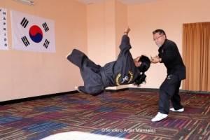 HoSinKwan invita al seminario abierto de Hapkido, arte marcial coreano de defensa personal