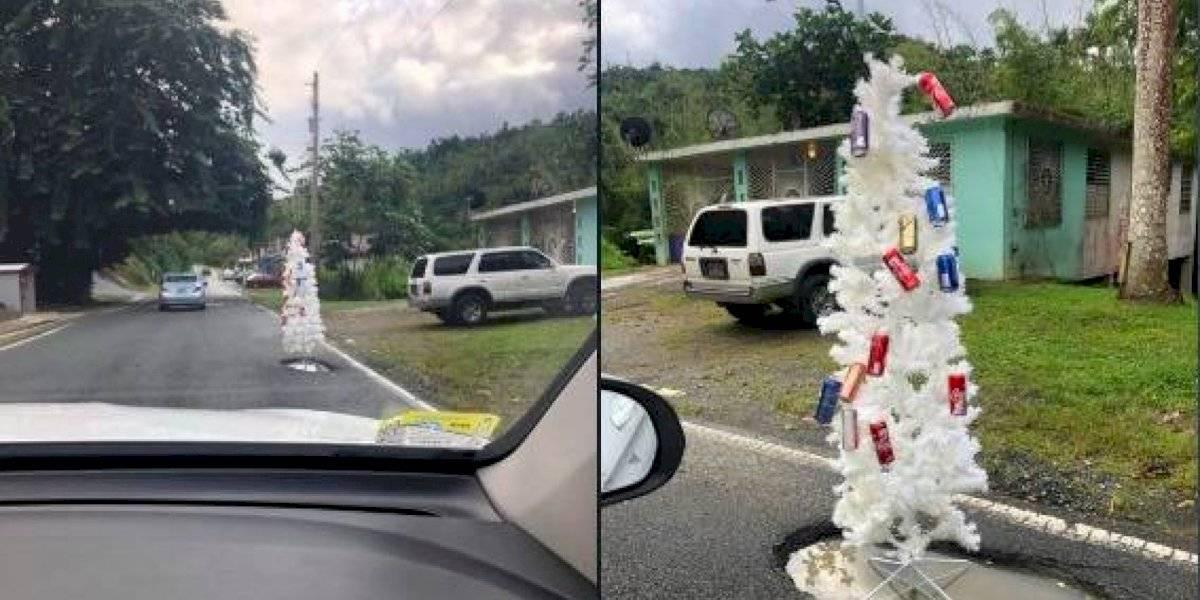 Colocan árbol de Navidad en hoyo en carretera de Aguas Buenas