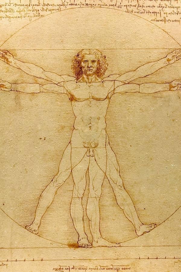 O Homem Vitruviano por Leonardo da Vinci