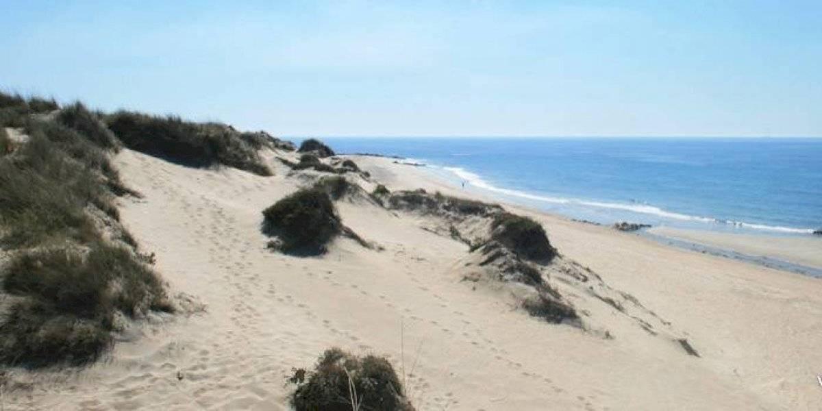 Dunas 'engolem' mulher de 61 anos em praia de Portugal