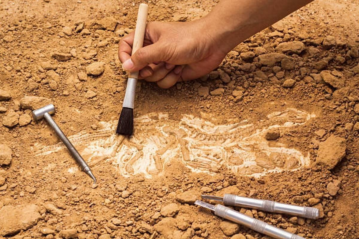 Dan con yacimientos arqueológicos en desarrollo de hotel en Viejo San Juan