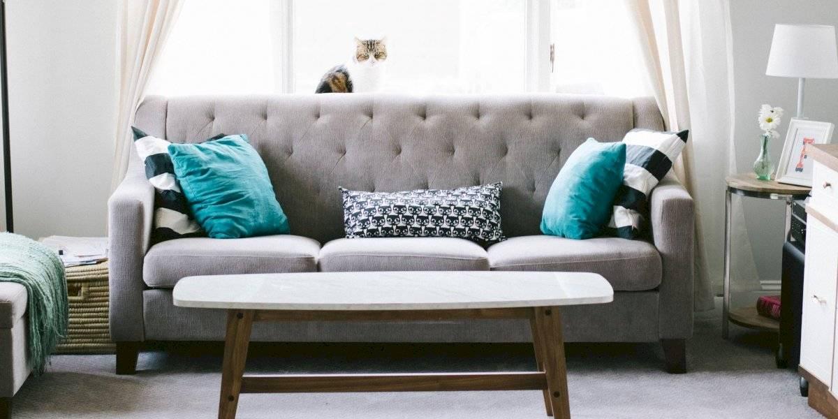 Decoração: 5 ideias para embelezar uma casa pequena