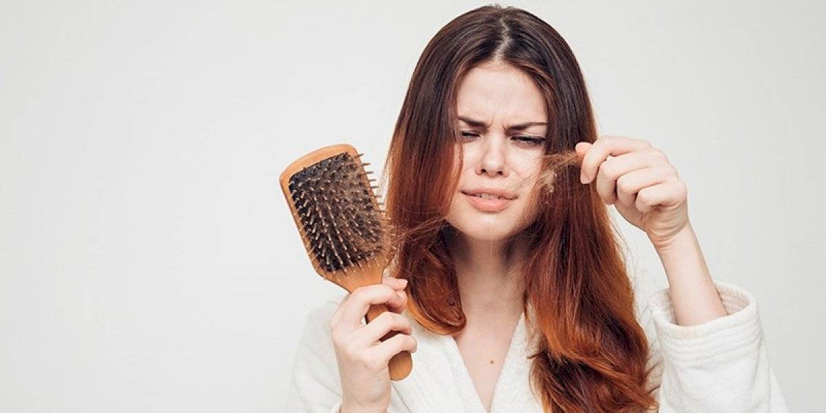 Shampoo caseiro de limão e alecrim para impedir a queda de cabelo