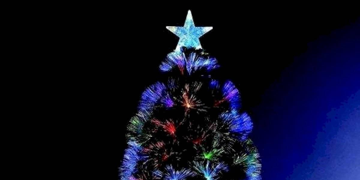 Familia coloca más de 300 árboles de navidad dentro de su casa