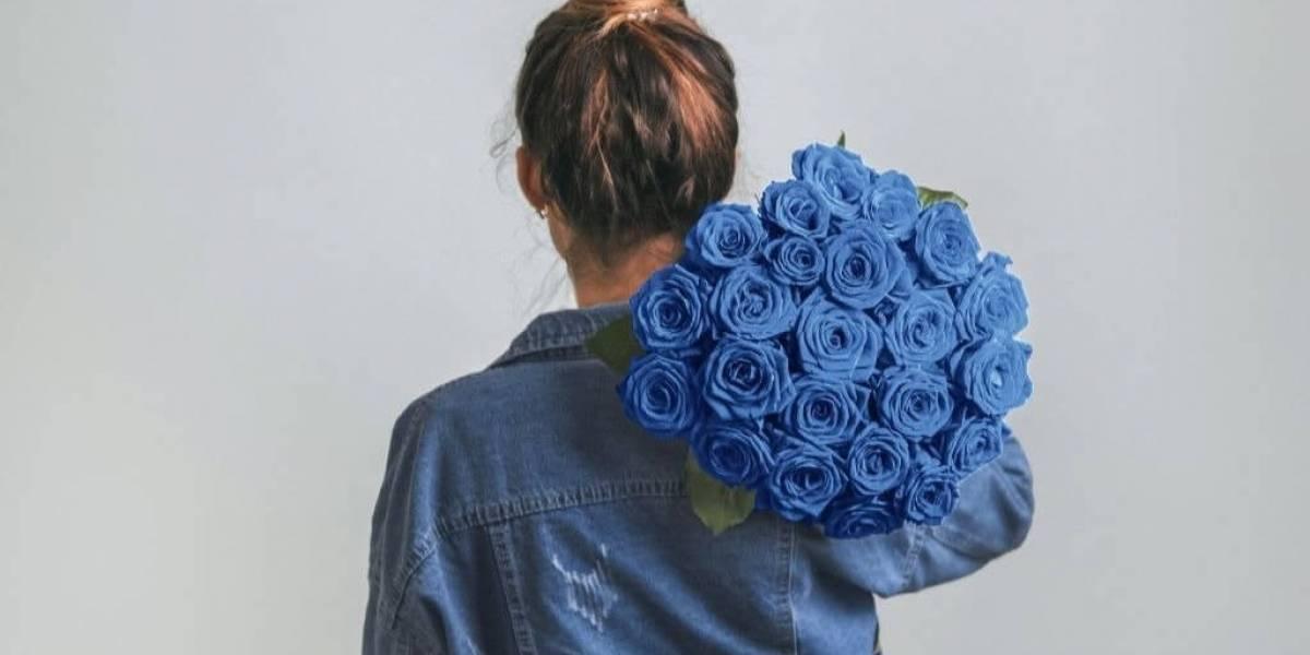 Pantone 2020: como usar a cor Classic Blue com dicas de Feng Shui