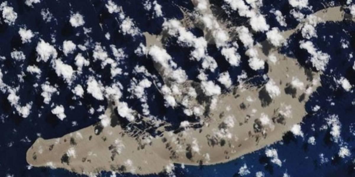 La misteriosa isla flotante que va directo a Australia, son 136 km cuadrados