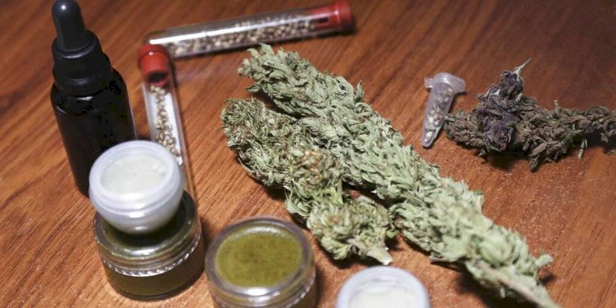 Ecuador a punto de legalizar cannabis medicinal