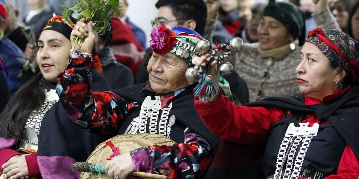 Convención constituyente con cupos de representación indígena