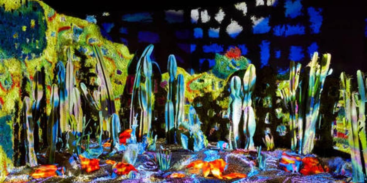 Arcadia Earth mezcla el arte con el activismo ambiental