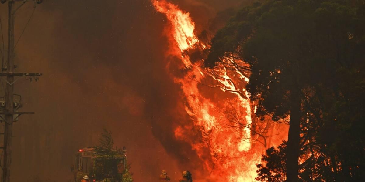 Todo un infierno: Australia registra temperatura récord por segunda vez en una semana y los incendios siguen consumiendo al país
