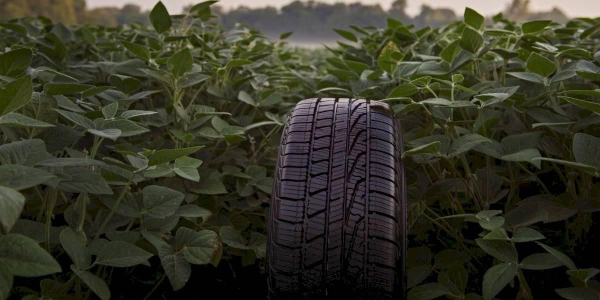 De esta forma, Goodyear aporta para cuidar el medioambiente
