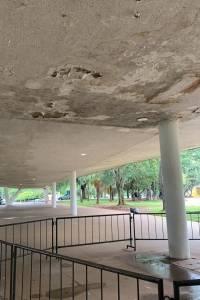 Parque Ibirapuera - problemas marquise - dezembro 2019