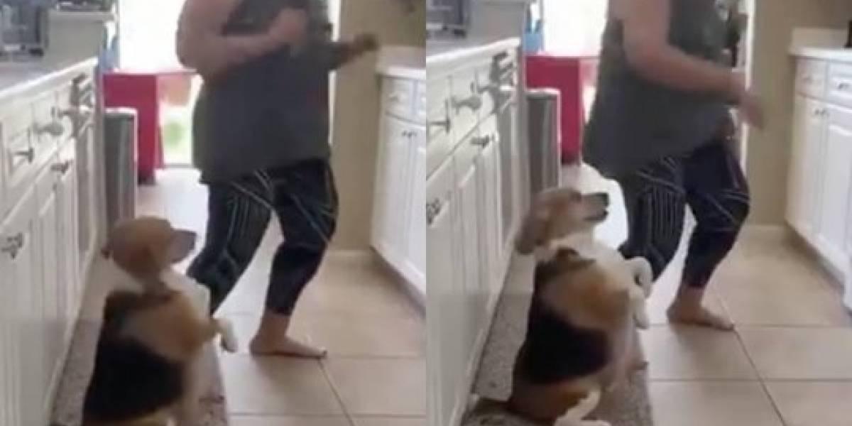 """(Video) Peludito se vuelve viral al """"perrear"""" al ritmo de reguetón"""