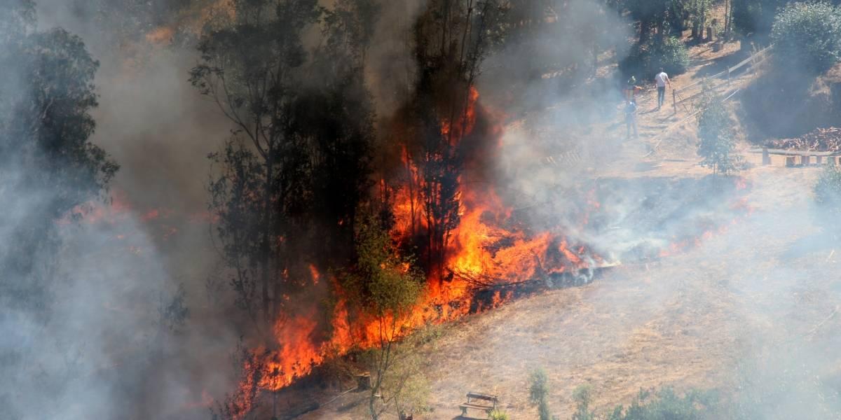 Chillán se suma a Lumaco y Olmué: Nueva Alerta Roja por incendios forestales