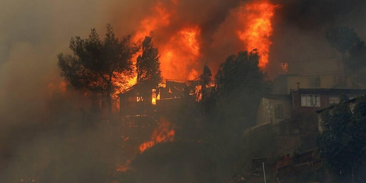 Alerta roja en Valparaíso: Incendio forestal de Cerro Rocuant afectó a 120 viviendas