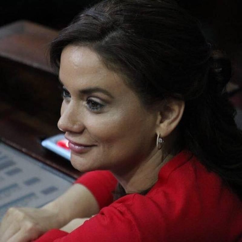El trabajo de la diputada Stella Alonzo consta en seis iniciativas de ley. Foto: Facebook