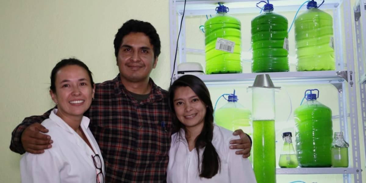 Emprendimiento ecuatoriano que podría salvar el aire del planeta recibió varios premios este 2019