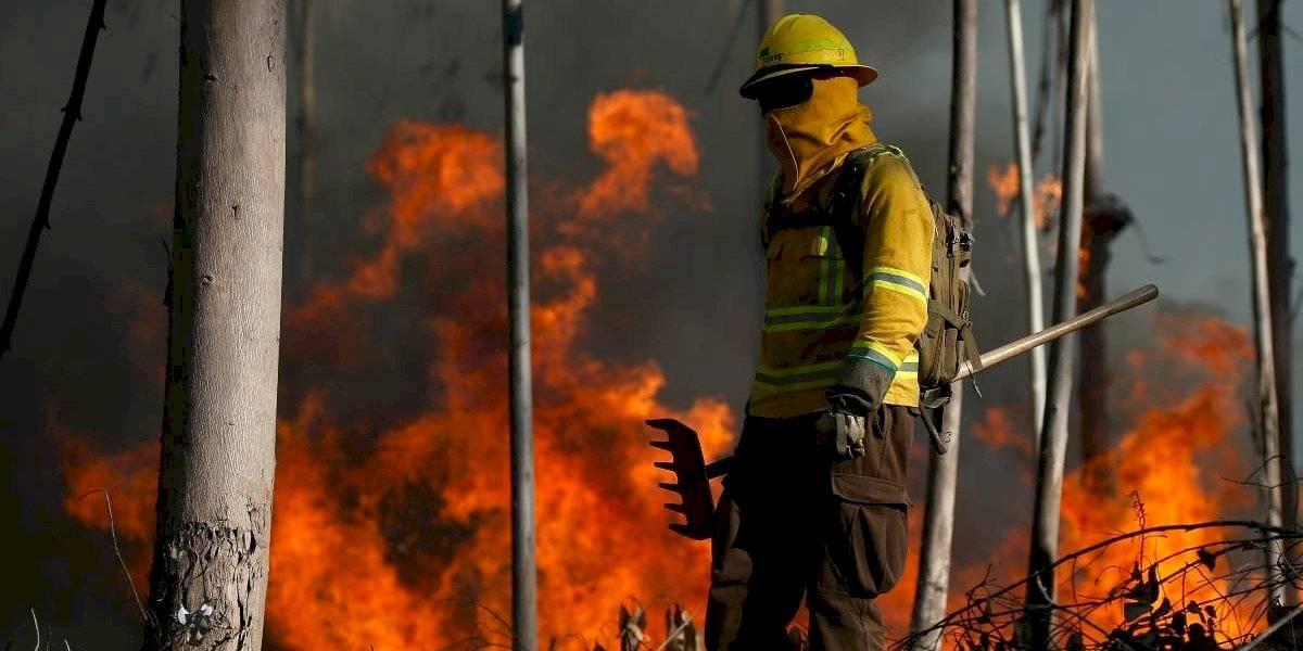 Alerta roja en San Javier: 80 hectáreas de vegetación y dos viviendas consumidas por incendio forestal