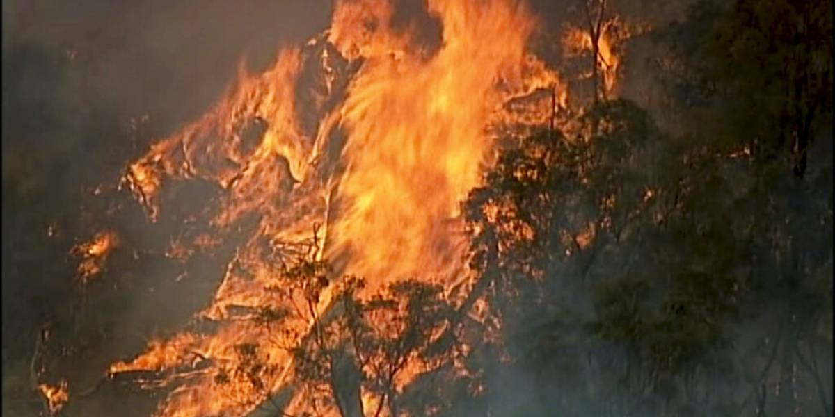 Australia cancela celebraciones de Año Nuevo por incendios