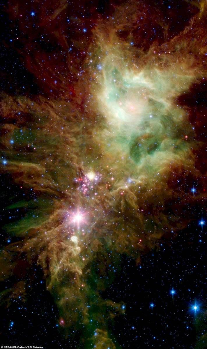 NASA libera foto de estrellas que parecen copos de nieve cósmicos