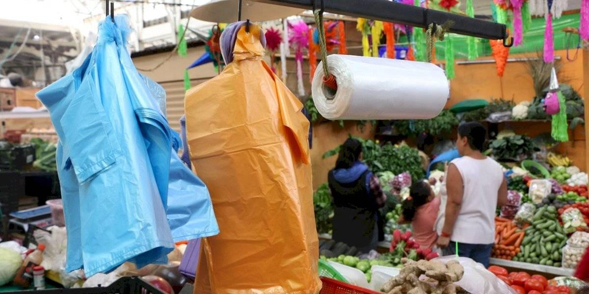 Crean bolsas compostables que cuidan el medio ambiente y reactivan industria
