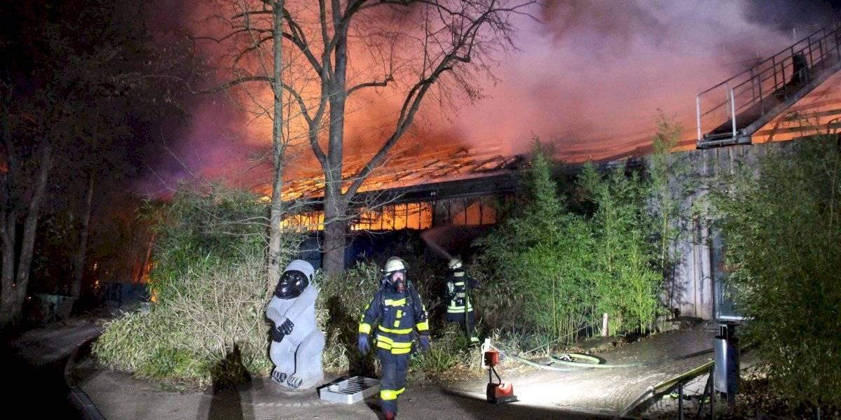 Incendio mata a más de 30 animales en zoológico de Alemania