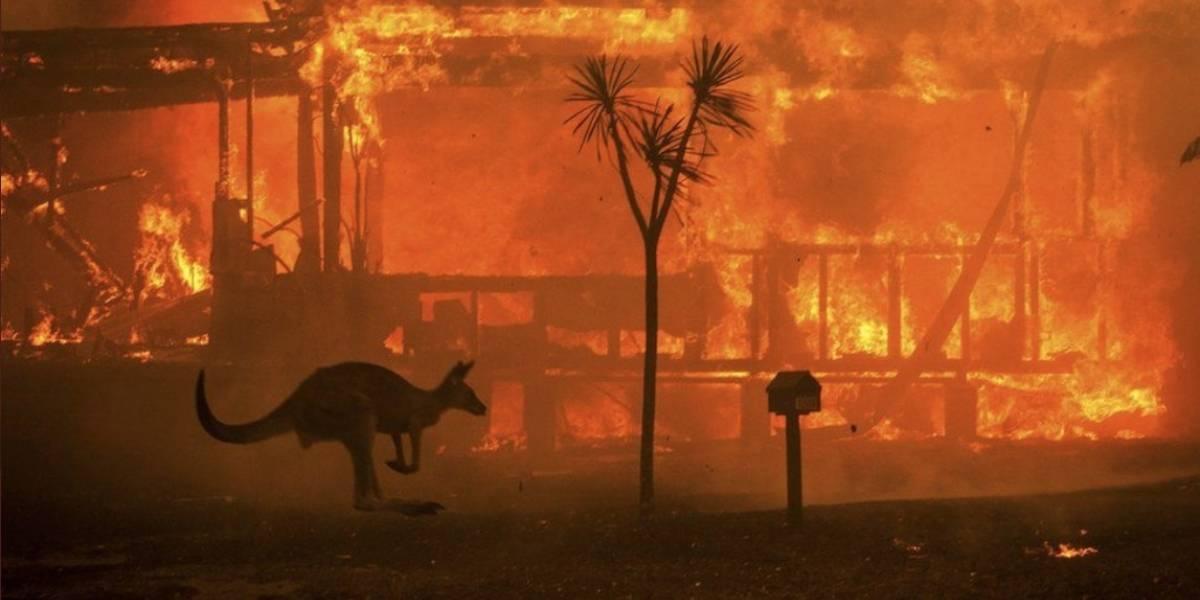 Ecuador no se verá afectado por el humo de los incendios de Australia