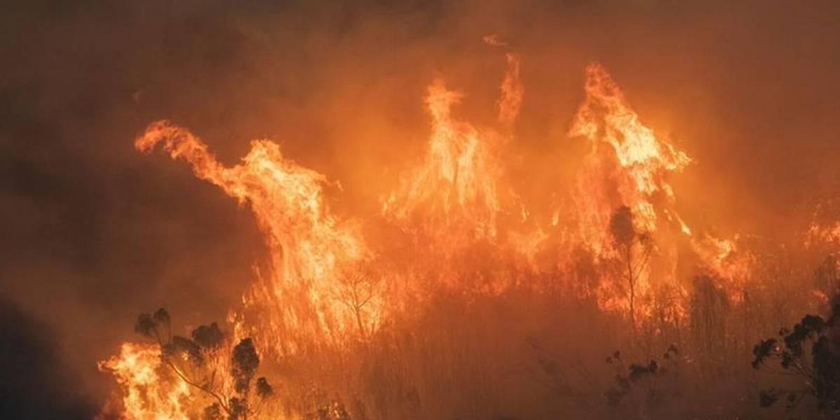 Australia evacua más ciudades cercanas a los incendios forestales que la afectan