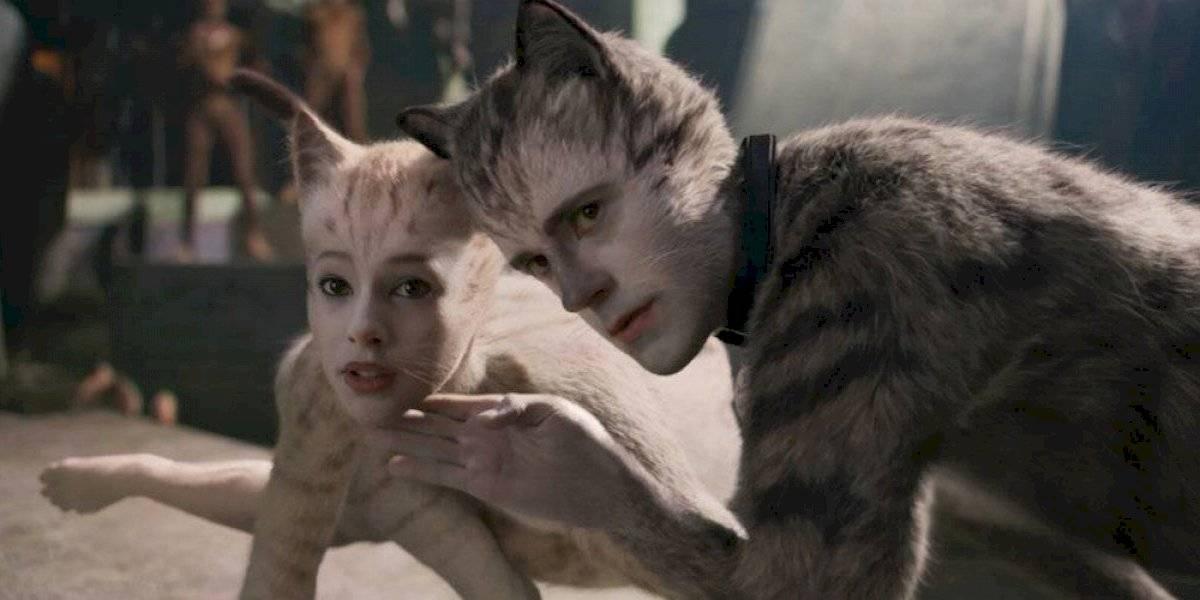 """¿Es mala la película? Productora del film """"Cats"""" prevé pérdidas de hasta 100 millones"""