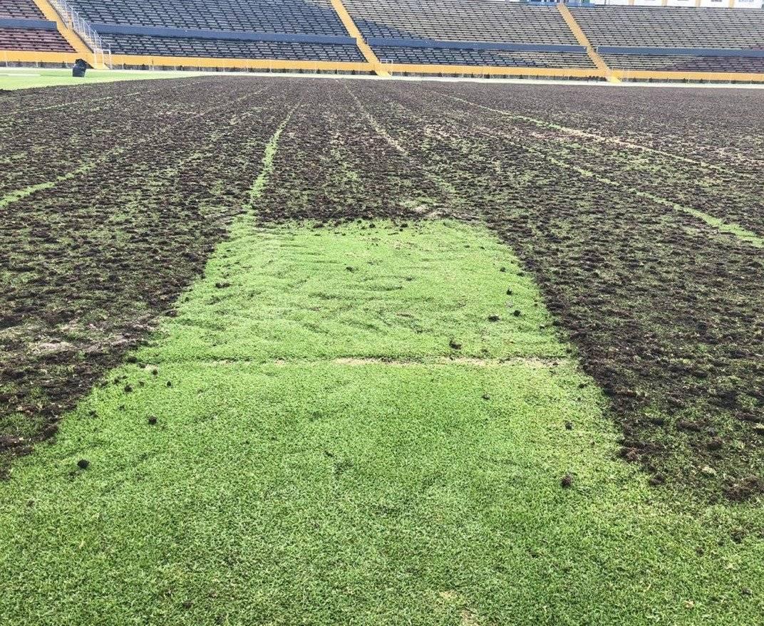 Remodelación del gramado del estadio Olímpico Atahualpa