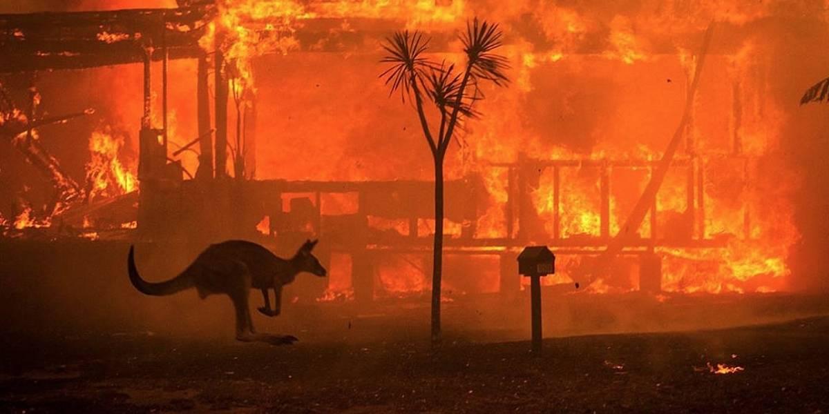 ¿Son los incendios de Australia provocados por seres humanos?