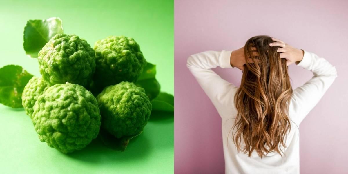 Como preparar shampoo de bergamota para acelerar o crescimento do cabelo