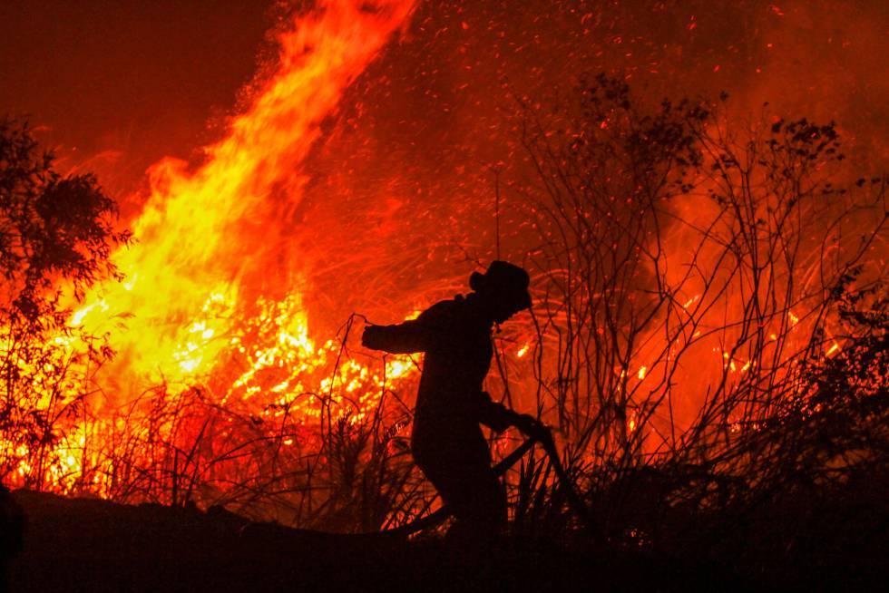 Amazonia Incendios