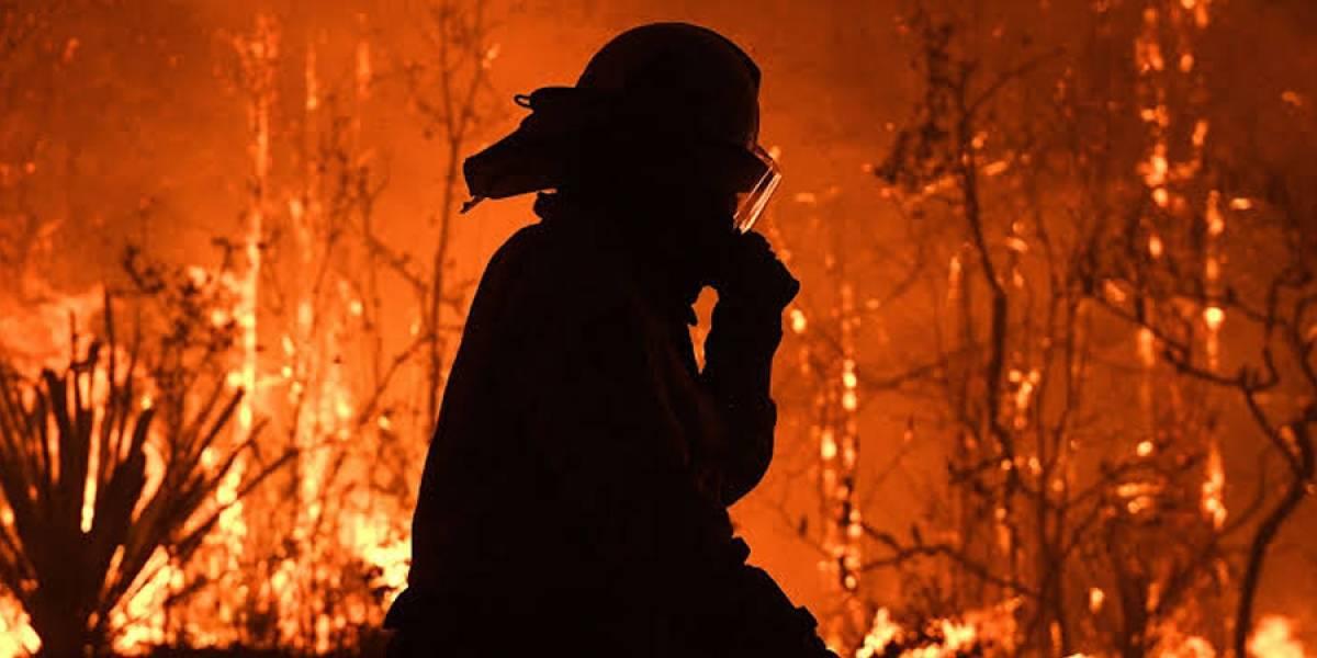 Chile en riesgo de un incendio similar al de Australia, advierte la Conaf