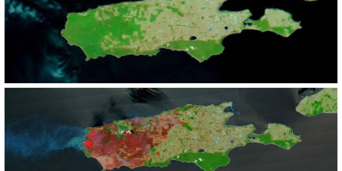 Una tragedia ecológica: el impresionante antes y después que muestra la devastación en la isla Canguro en Australia por los incendios