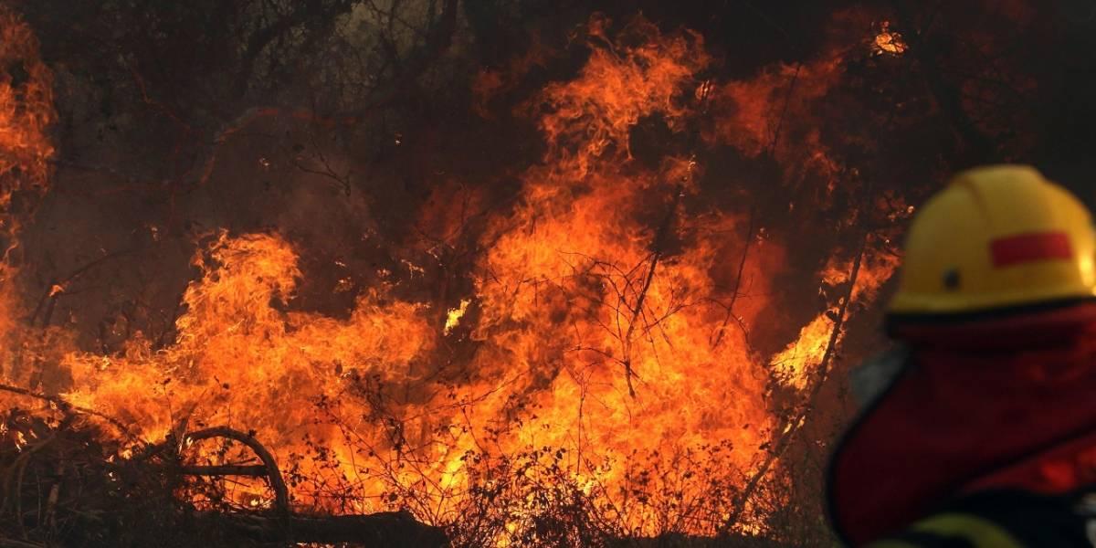 Malas noticias: La Amazonia parece estar en riesgo de incendios también