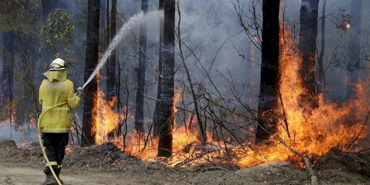 72 mil bomberos voluntarios combaten las llamas en Australia