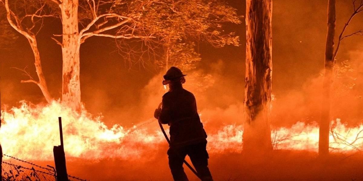 Australia: Humo de los incendios forestales han dado la vuelta al planeta