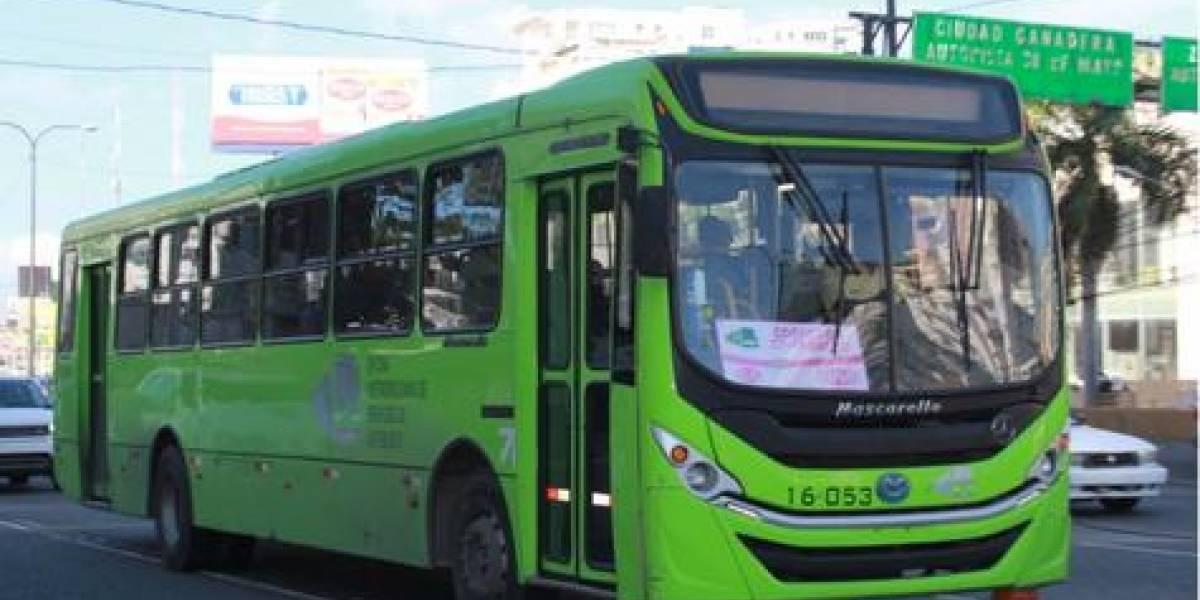 OMSA dará transporte gratis a los aficionados asistan al Preolímpico de voleibol en la capital