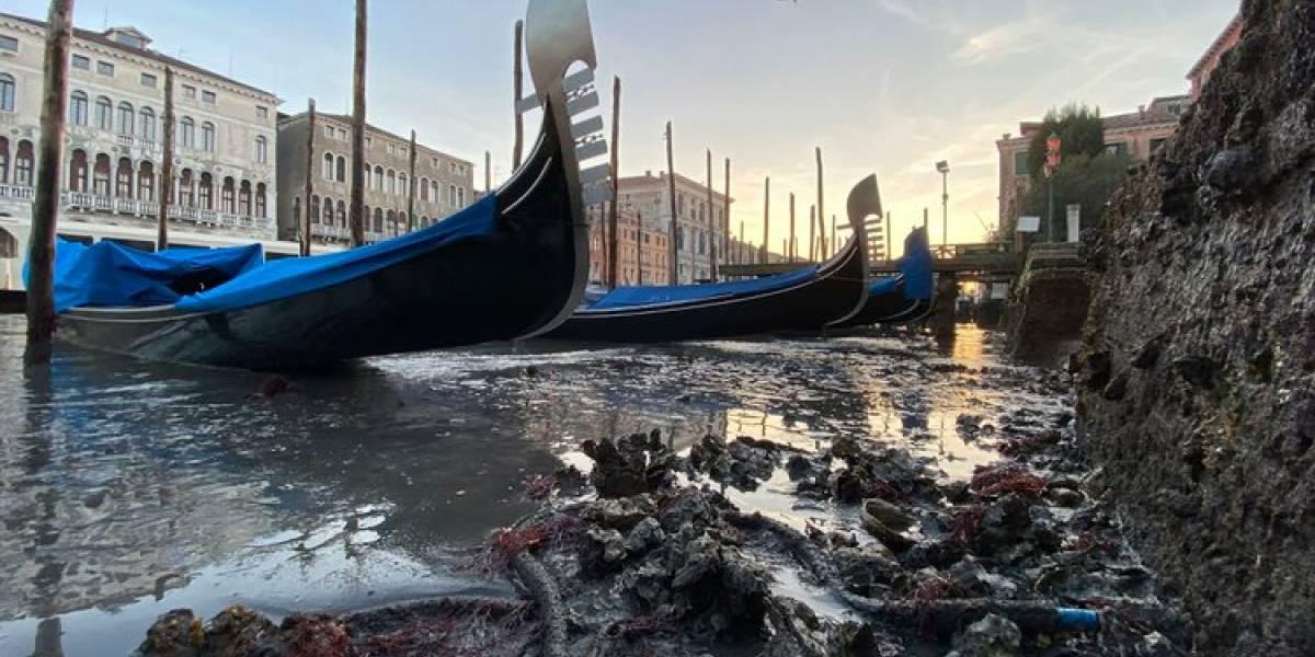 ¡Venecia sin agua! Impresionantes imágenes de las devastadores inundaciones