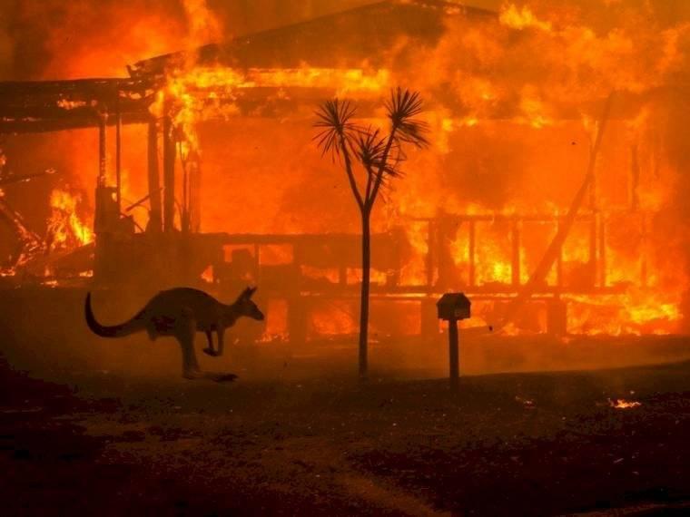 La historia detras de la foto de los incendios de Australia Instagram