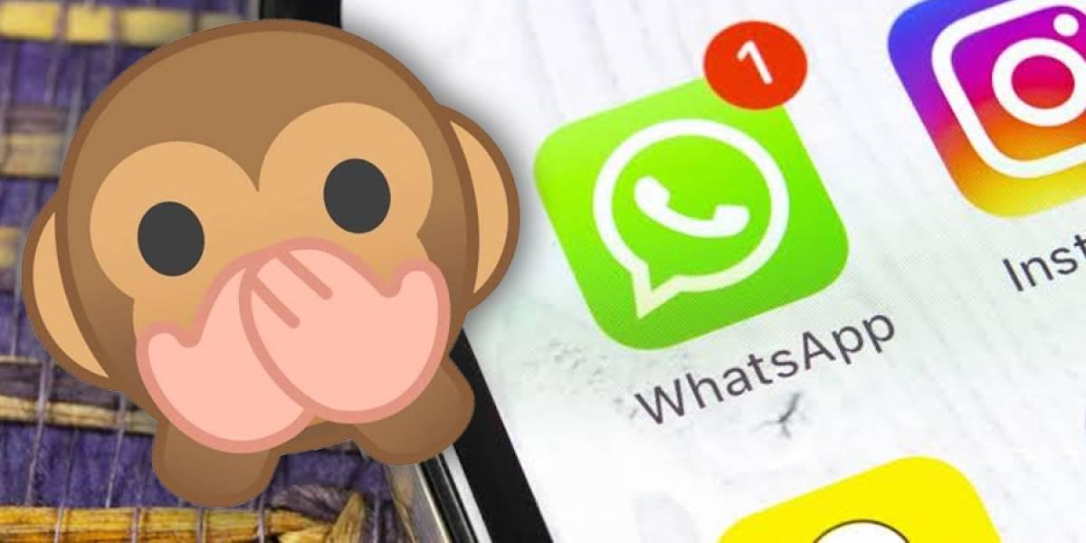 WhatsApp: Cómo ocultar tus estados a un contacto
