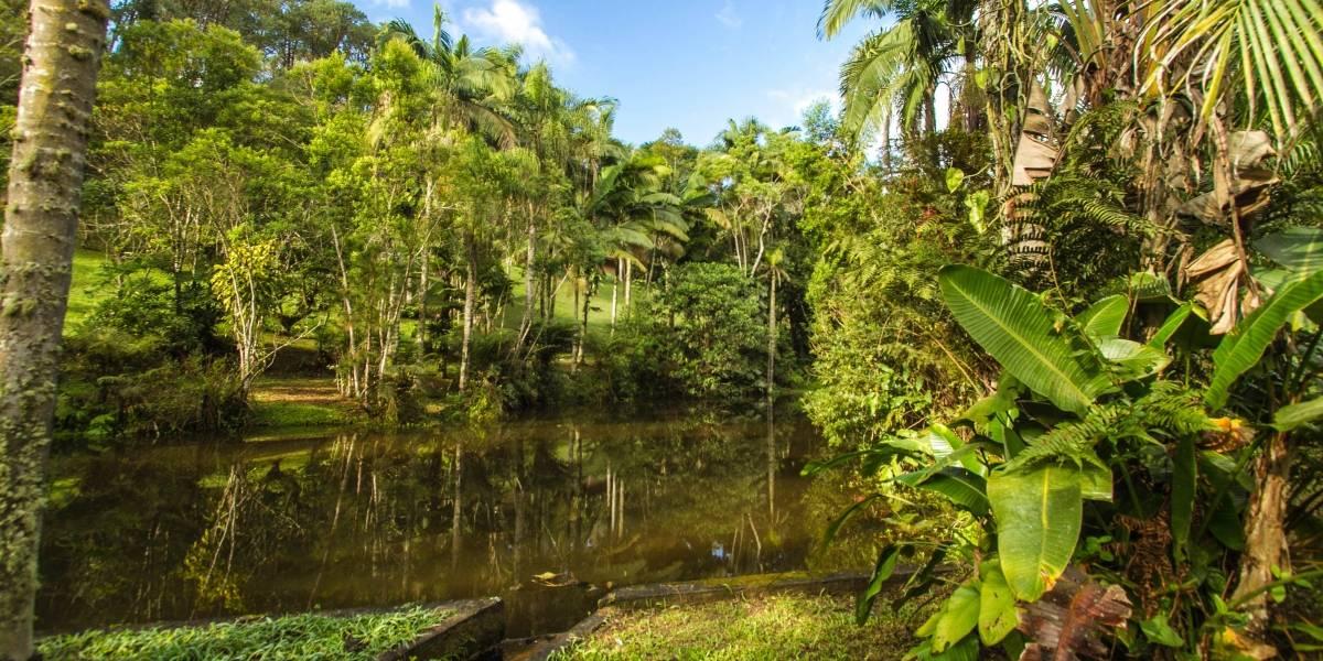 São Paulo lança programa de visitas com guia a parques naturais