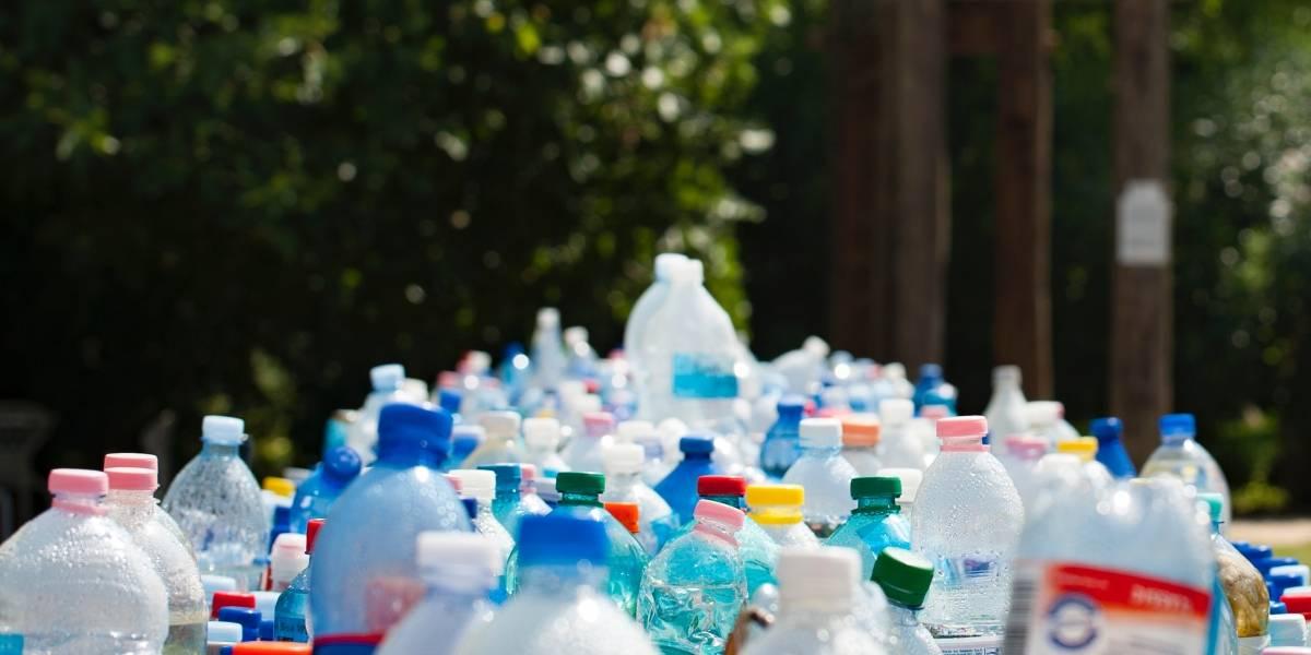 """Entregarán """"tomatodos"""" en escuelas y colegios de Ecuador para reducir uso de plástico"""