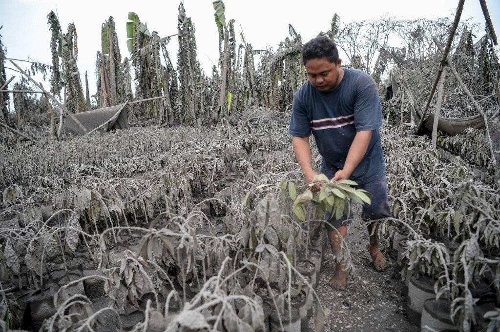 Erupción del volcán Taal, en Filipinas