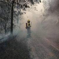 Incendio forestal en cerro Casitagua