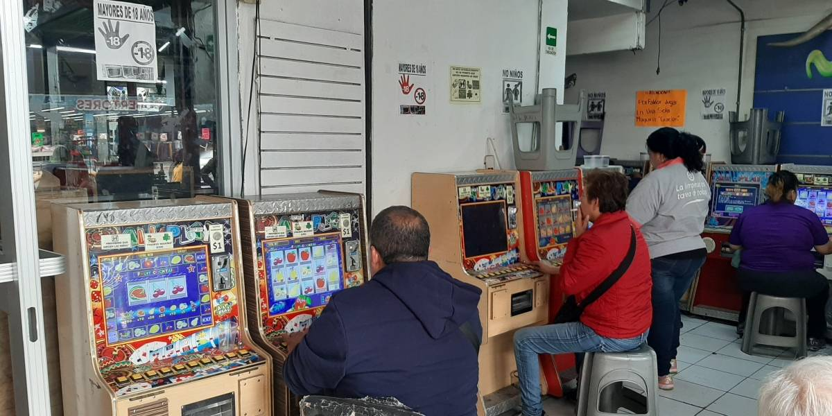 "Operan en NL ""mini casinos"" con total impunidad"